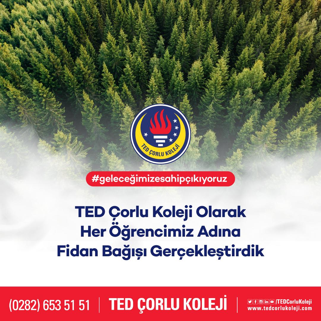 tedcorlu-sm-12-11[7]